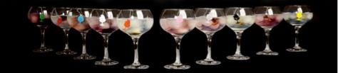 Copas Infugintonic Vinopremier