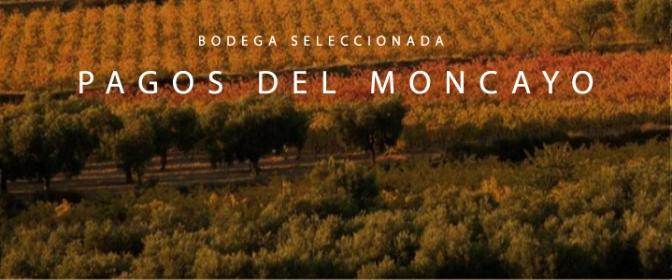 """Gonzalo Marchant, enólogo de la Bodega Pagos del Moncayo: """"Lo que diferencia a los vinos no es su procedencia, sino la pasión que le pone cada enólogo o bodeguero"""""""