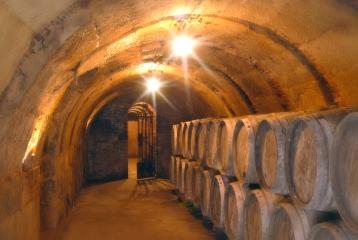 vino-premier-amezola-de-la-mora-cuevas