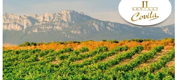 Bodegas Covila – Vinos de la Tierra de Rioja Alavesa