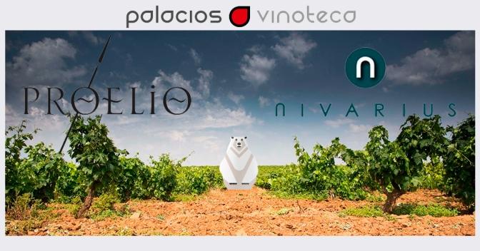 """PABLO TASCÓN: """"Los vinos Españoles son los mejores del mundo en relación calidad-precio"""""""