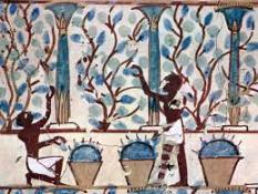 vendimiadores-antiguo-egipto-bodegas-jabalcon