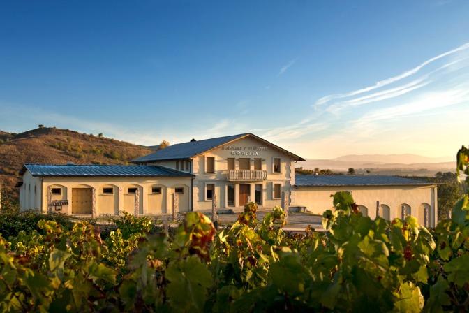 Bodegas y Viñedos Godelia respeto por la naturaleza y pasión  por el buen vino