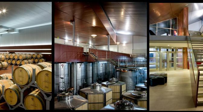 Bodega Valbusenda: Vinos que se destacan por su calidad y elegancia de sensaciones